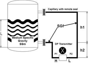 Diaphragm-Seal-DP-Transmitter